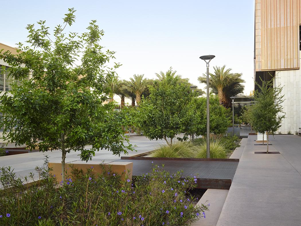 Arizona State University Orange Mall Green Infrastructure