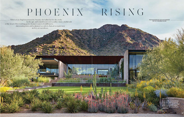 Martha Stewart Living: Phoenix Rising